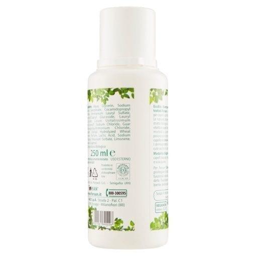 EcoBio-Shampoo-Back