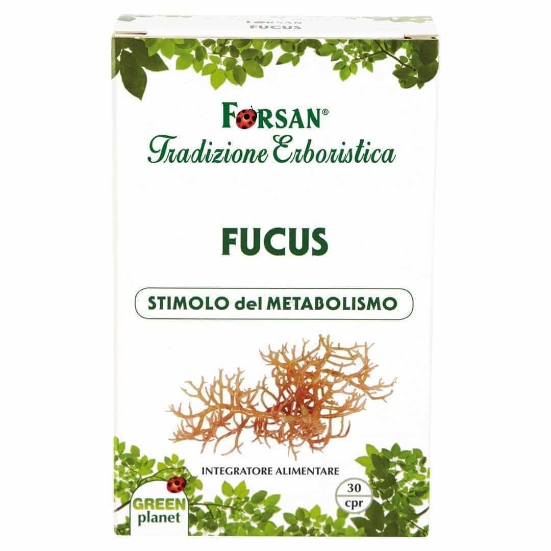 Forsan Fucus