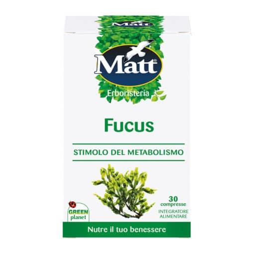 Matt-Fucus